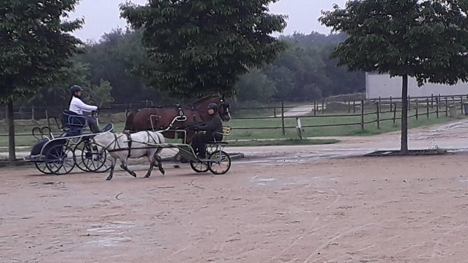 Sandrine et Marie à l'equipole Landivisiau poney e…