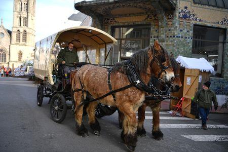 Opinion – Bien-être animal : à Limoges, les tours en calèche suscitent interrogations et clichés