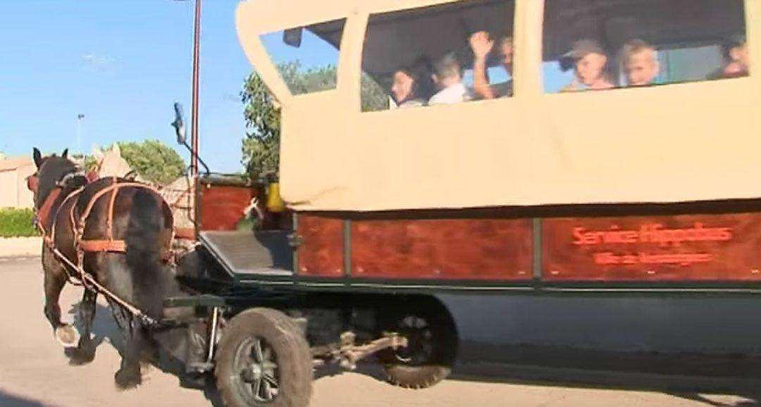 Dans cette commune française, les enfants vont à l'école en calèche et non en bus