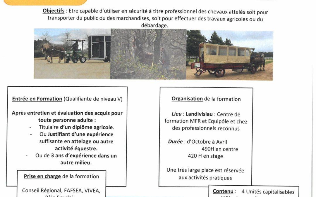 Formation CS «Utilisateur de Chevaux Attelés» In…