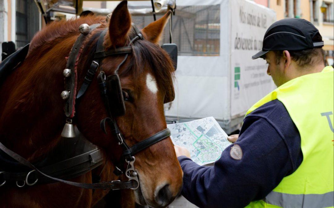 La collecte des déchets à cheval : une «fausse bonne idée» ?