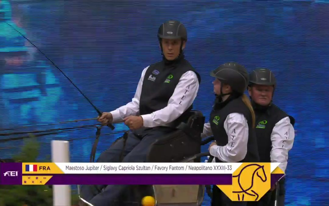 LIVE | Competition 1 | Stockholm (SWE) | FEI Driving World Cup™