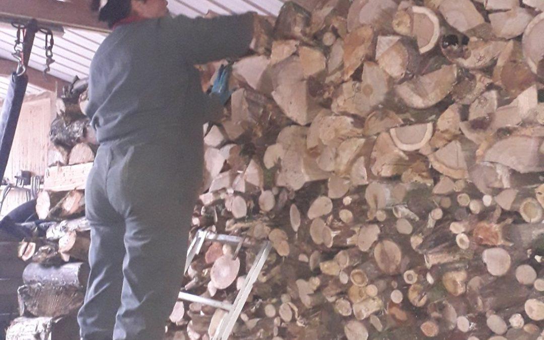 Le bois de la parcelle de L'abbaye de Langonnet es…