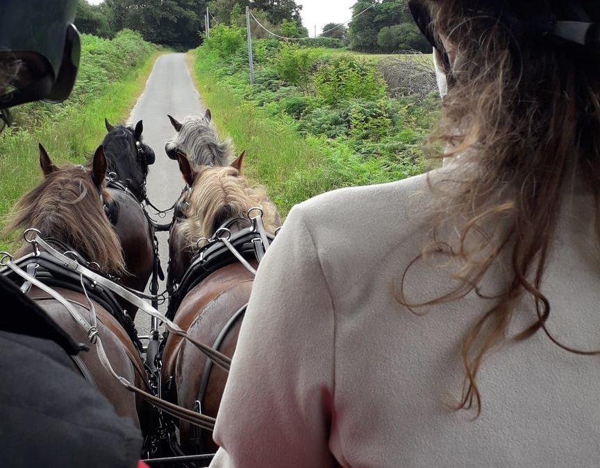 Initiation à l'attelage à quatre chevaux avec Uzen…